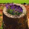 Make A Tree Stump Planter _10