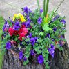 Make A Tree Stump Planter _7